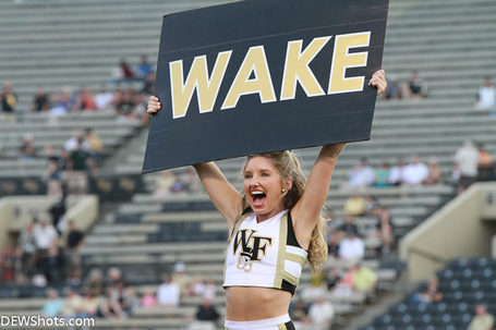 Wake_cheer1_medium