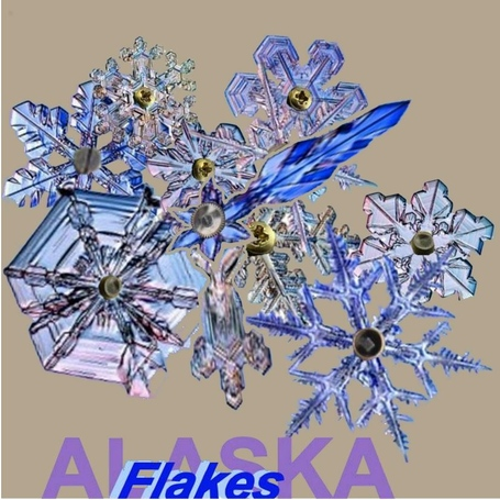 Alaskaflakes2_medium