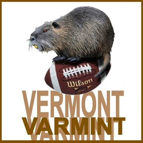 Vermontvarmint_medium