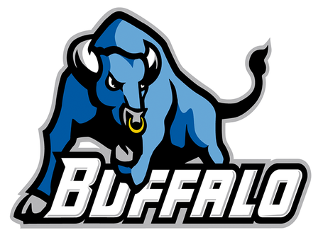 Buffalo_medium