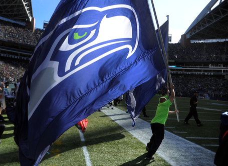 Seahawk_flag_medium