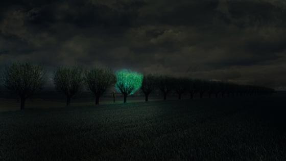 Glow_tree