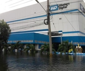 WD flooding