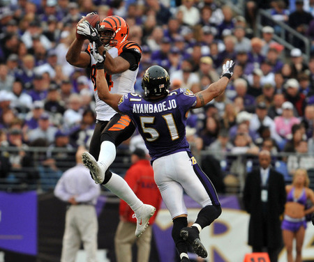 BALTIMORE - NOVEMBER 20:  Jerome Simpson #89 of the Cincinnati Bengals makes a catch against Brendon Ayanbadejo #51 of the Baltimore Ravens at M&T Bank Stadium on November 20, 2011 in Baltimore, Maryland. The Ravens defeated the Bengals 31-24. (Photo by Larry French/Getty Images)