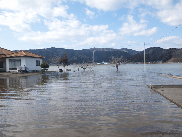 Flooded Fields in Miyagi Prefecture