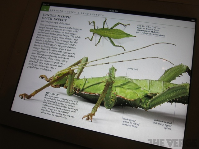 Gallery Photo: iBooks 2 event hands-on