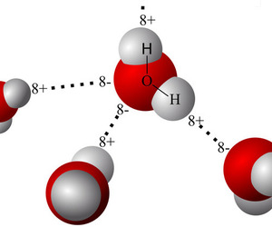 Hydrogen Bonding H2O water