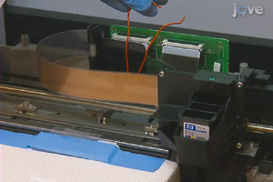 Inkjet printer hacked to seed living cells