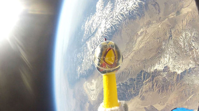 Camilla the NASA chicken