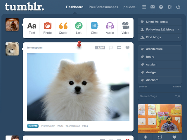 Tumblr pinned post MASHABLE