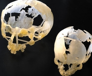 3D printed Neanderthal skulls - via Nature
