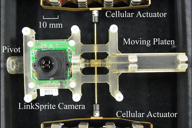 photo image Researchers at Georgia Tech develop robot cameras that replicate eye movement