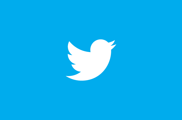 new twitter bird