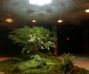 lowline exhibit