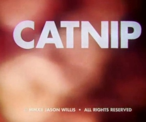 Catnip Sundance short film