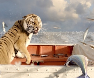 life of pi 1020