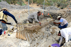 dinsaur remains, mexico (INAH credit)
