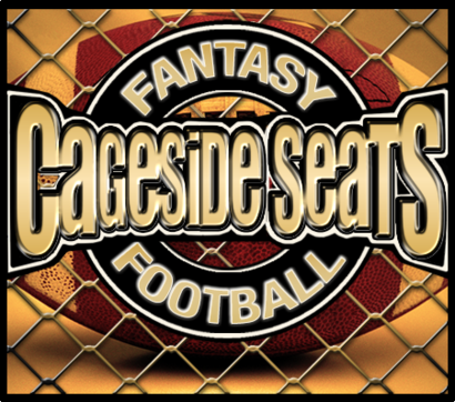 Css-fantasy-football-logo