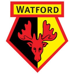 Interview With An Away Fan Watford Through It All Together