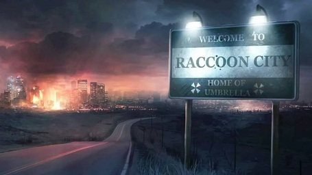 Raccooncityview2_medium