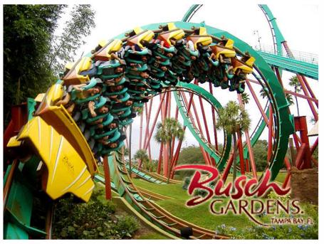 Buschgardens2_medium