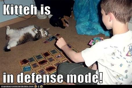 Lolcat_defense_mode_medium