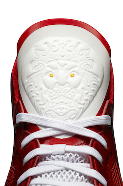 LBJ_VIII_Red_nbaFinals_004