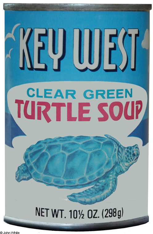 turtle-soup.jpg