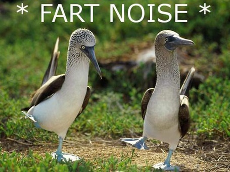 Fart-noise_medium