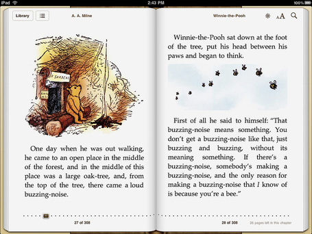 Ipad-ibooks-landscape-view_0_medium
