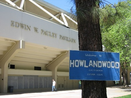 Howlandwood_medium