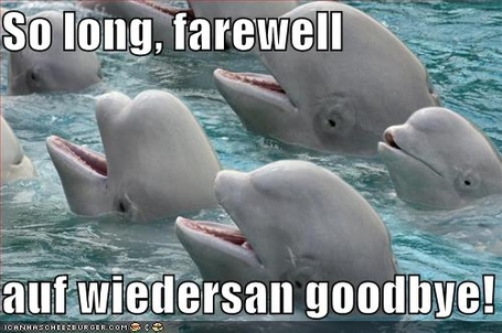 Funny_goodbye_pictures__2822_29_medium