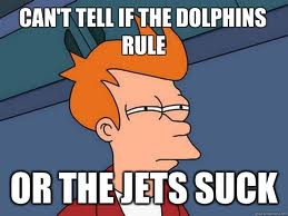 Dolphinsrulejetssuck-1_medium