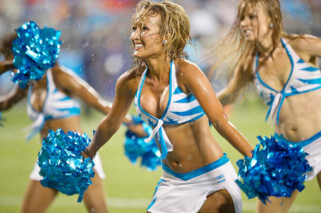 Carolina-panthers-topcats-6_medium