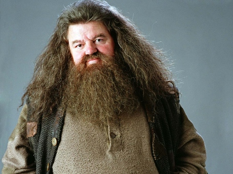 Rubeus-hagrid-wallpaper-hogwarts-professors-32796370-1024-768_medium