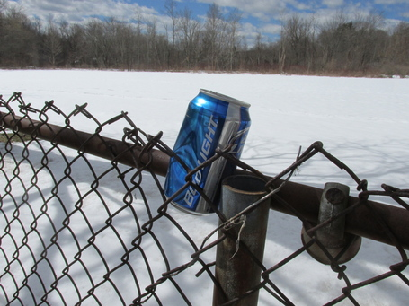 Bud_light_in_the_environment__lexington_ma_medium