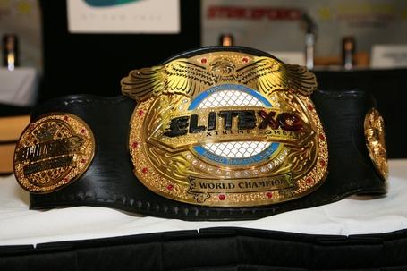 img_0675-elitexc-belt_medium.jpg