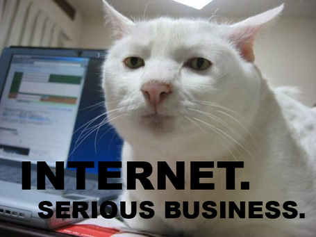 Internetcat_medium