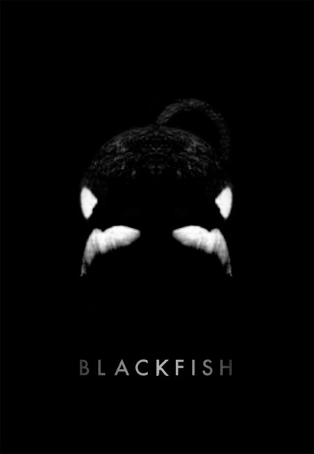 Blackfish_medium
