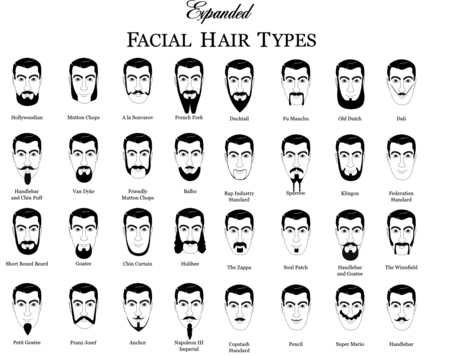 Beard-chart-graphic-design-7_medium