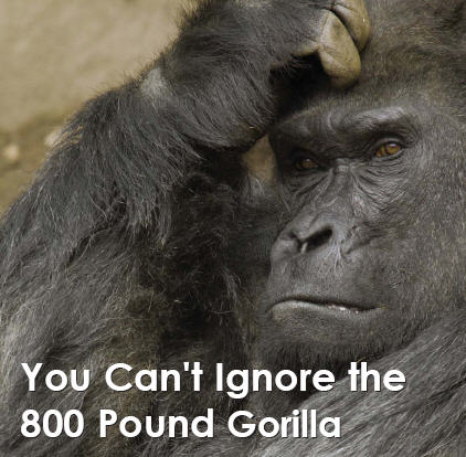 Gorilla_medium