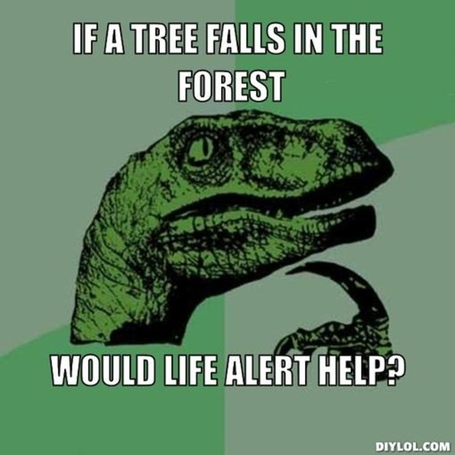 Resized_philosoraptor-meme-generator-if-a-tree-falls-in-the-forest-would-life-alert-help-3701ce_medium