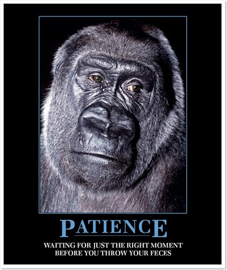 Patience_medium