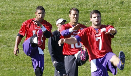Christian-ponder-josh-freeman-matt-cassel_medium