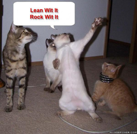 Lean_wit_it_rock_wit_it_cat_medium
