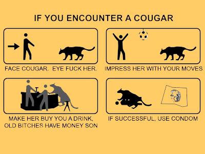 If-you-encounter-cougar_medium