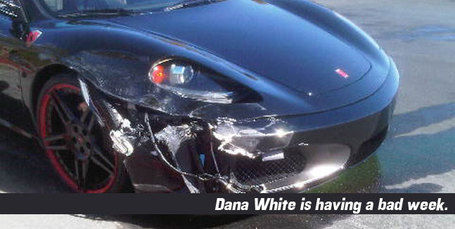 1257447336_dana-white-car_medium