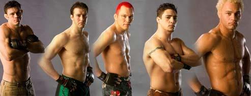 ultimate fighter reunion