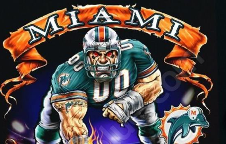Graphics-football-miami-dolphins_medium
