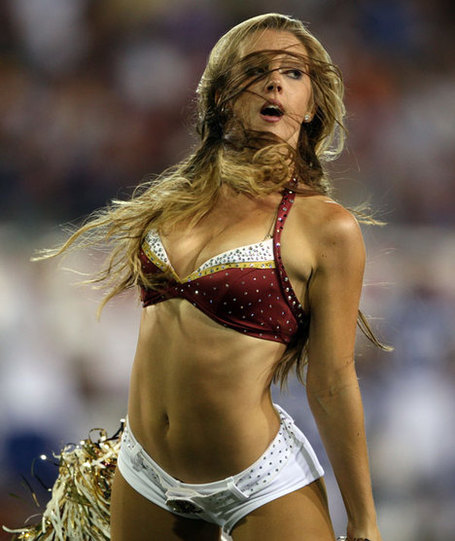 Redskins_cheer_nfl_medium